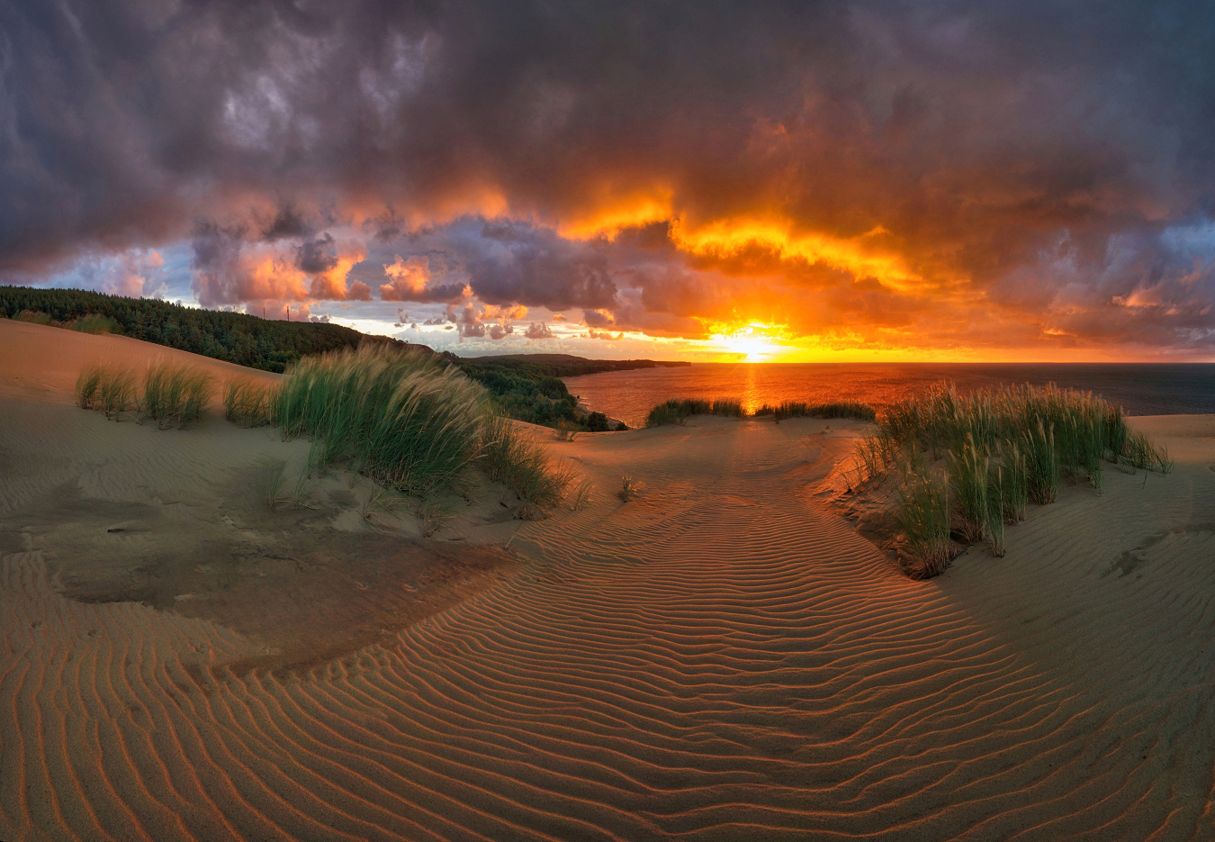Prosecutors protect the Curonian Spit National Park 28